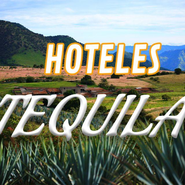 Top 10 hoteles en Tequila