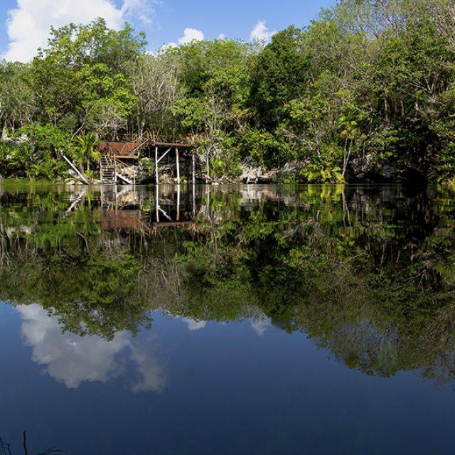 Cenote Garden of the Eden